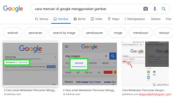 Cara Mencari Informasi di Google Menggunakan Gambar